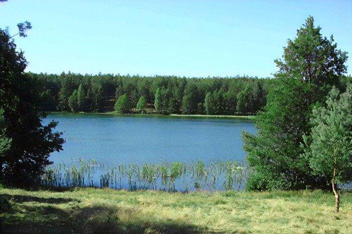 Jezioro Skoszewskie / Jezioro Somińskie