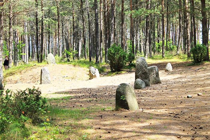 Kamienne Kręgi w Węsiorach
